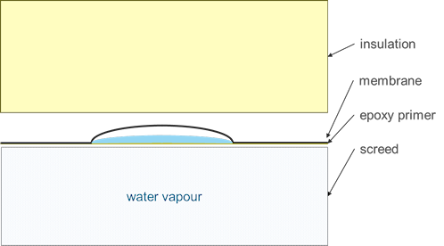 Sketch of condensation within a vapour-filled blister